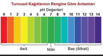 pH ve Turnusol Kağıdı